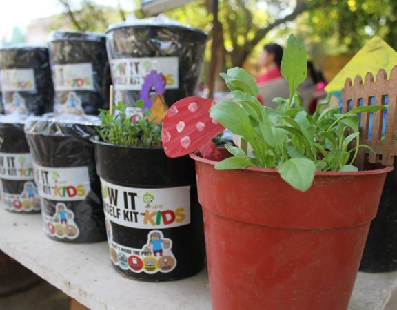 Grow it Yourself Plant Kits